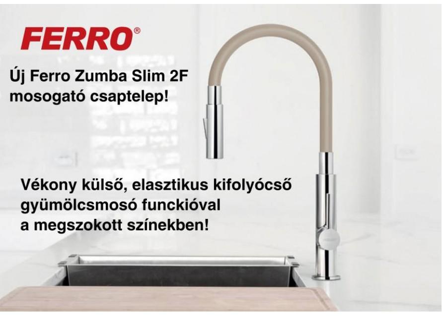 Zumba Slim 2F